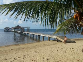 A Paradise To  Dive - Snorkel Or Just Relax, Sandy Bay
