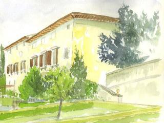 Florentine villa among olive trees, Florence