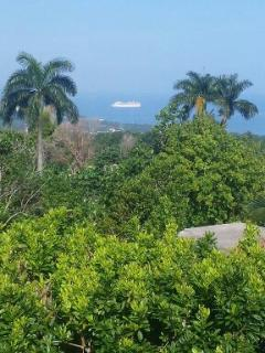 A cruise ship about to dock in Ocho Rios