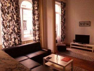 Spacious Antoine IV apartment in Brussels Centre with WiFi & lift.