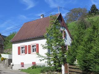 Gemütliches Ferienhaus am Rand der Vogesen, Soultzeren