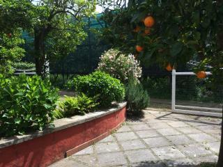 I Giardini di Daphne Delizioso monolocale