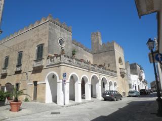Dependance Palazzo RIPA, Specchia