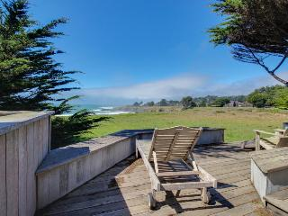 Oceanfront home with hot tub, deck, shared pool access, & dog-friendly too!