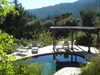 Redwood Forest Estate with Pool near Santa Cruz, Boulder Creek