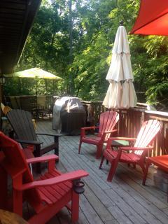 outside deck BBQ - propane