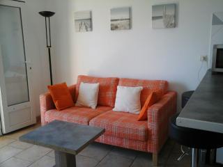 appartement  pour 4personnes à 150m de la plage, Frontignan