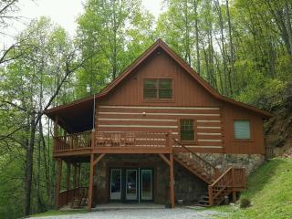 Secluded Cabin -  Dog Friendly!, Townsend