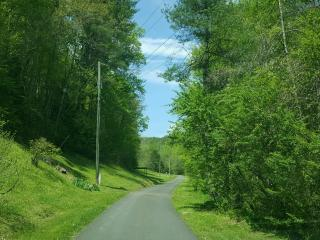 Road going to Black Bear Lodge
