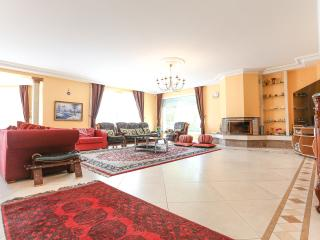 Spacious Villa Nr Disneyland Paris sleeps 12/15, Chessy