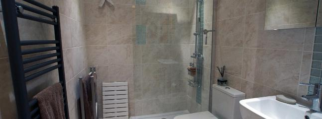 The Bathroom with walk in shower