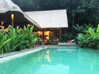 HEAVEN Villa, private, beautiful, calm, Tegallalang.