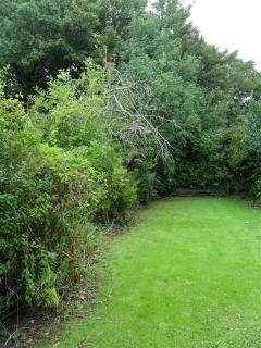 Large mature garden accessible from kitchen downstairs
