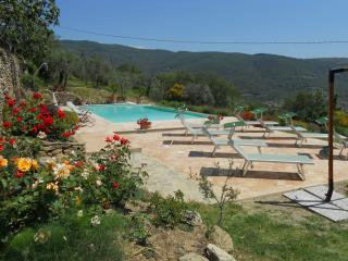 Villa Parterre Villa in Cortona to Let, Tuscan holiday villa to rent, self