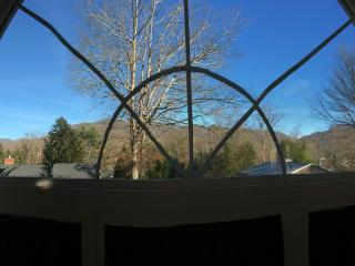 Sky Tree Cathedral Loft, Charming Black Mountain, Asheville