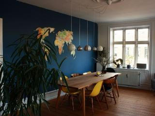 Large charming Copenhagen corner apartment near City