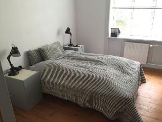 Nice Copenhagen apartment near Svanemoellen st, Copenhague