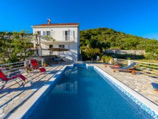 Villa Natura with pool in Dubrovnik