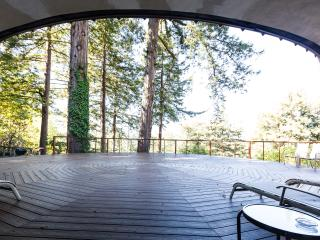 Romantic Luxury Home on Acre of Redwoods w/Hot Spa, Scotts Valley