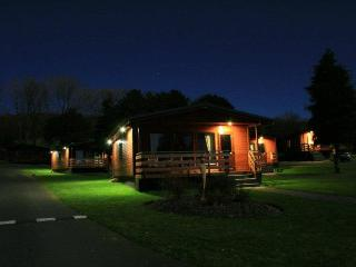 Birch Hot tub lodge 23 - 102779, Newton Stewart