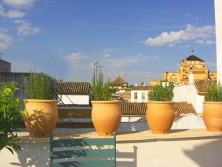 Fantastica terraza con vistas a la Mezquita (VFT/CO/00423)
