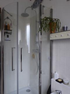 Large corner entry shower