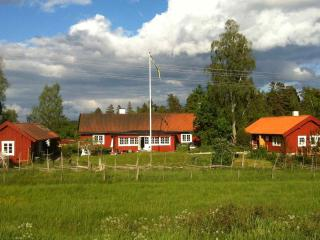 Cottage and B&B, countryside near StockholmSkavsta, Tystberga