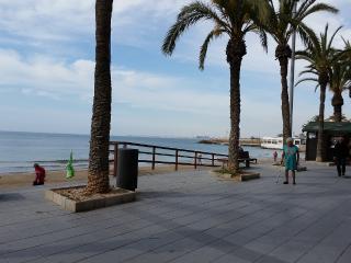 Apartment at 100 m from Playa del Cura, Torrevieja