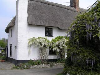 Cosy Thatched Cottage close to sandy beaches, Bigbury