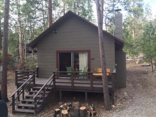 Cozy cabin in the woods - Close to the arts/music