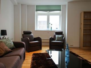 Spacious Knight's Court 1B apartment in Islington with WiFi & lift.