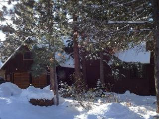 Magical Spacious Mountain Retreat - Ideal Location, Truckee