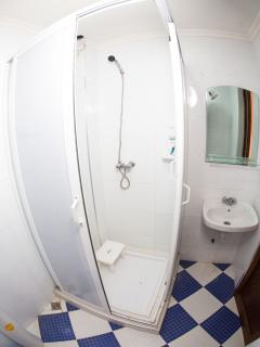 Bathroom with shower, toilet and lavabo