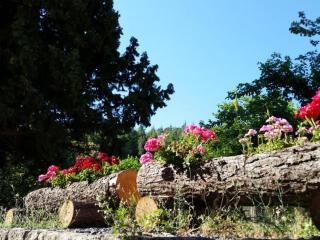 NATURA E RELAX, toccasana per la mente e il cuore, Castiglione di Sicilia