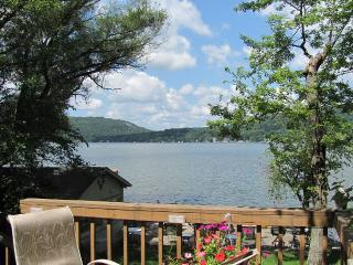 Beautiful lake front house living with great views, Branchville