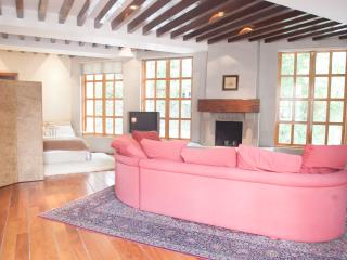 Charming Loft in the Heart of Coyoacan!