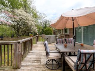 Watauga River Getaway- 4BR Elizabethton Home w/Over 300ft of Private River