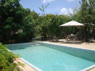 The Pearl Of Jan Thiel with private swimming pool, Curazao