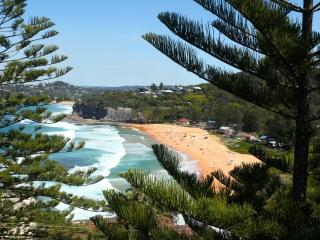Scandi Beachside Apartment, Bilgola