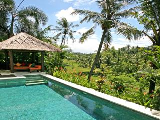 Villa Abadi in the heart of Bali rice terraces, Canggu