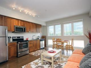 Bright New Apartment with Mountain Views, Squamish