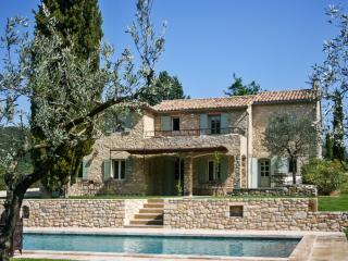 Spacious French villa with pool, Nyons