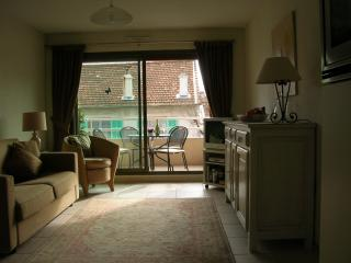 Executive Let 1 Bedroom Apt sunny south facing