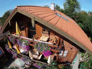 Atelierwohnung in vollbiolog.(Holz)-Landhaus, ruhige Lage mit Bergblick