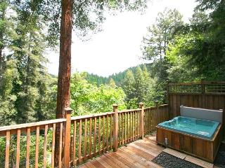 """Mystic Cottage""Soaring views,hot tub,Near River/Ocean/Vinyards 3 for 2!, Monte Rio"