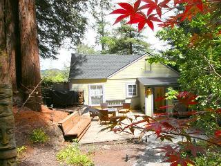 'Mystic Cottage' Soaring views,Hot Tub,Near River/Vineyards!15 min to Ocean!