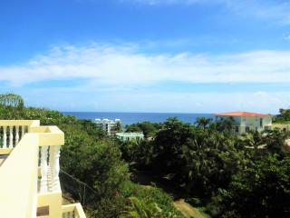 Villa 204 - walking distance to Sandy Beach, Rincon