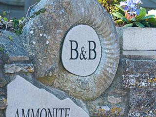 Ammonite B&B The East Room