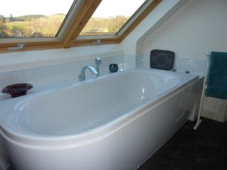 Beautiful double-ended bath.
