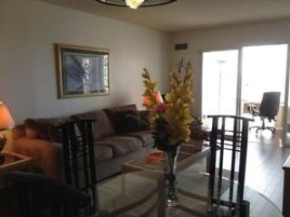 fully furnished, decorated and equipped condo